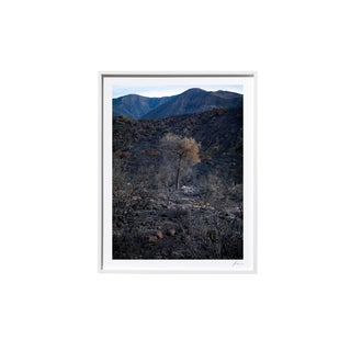 "Timothy Hogan ""Impossible"" Original Framed Color Landscape Photograph, 2017 For Sale"