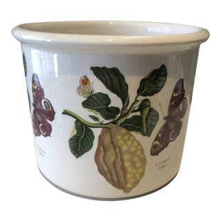 English Porcelain Garden Crock For Sale
