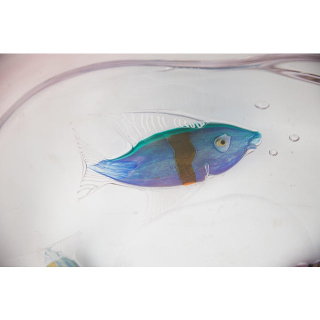 Pino Signoretto Exhibition Signed Murano Hand Blown Art Glass Tropical Fish Bowl For Sale In New York - Image 6 of 8