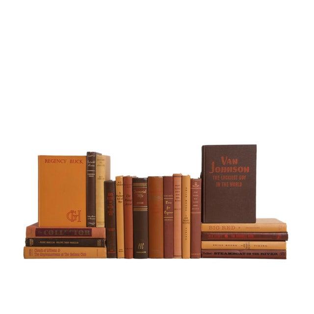 Rustic Midcentury Mix: Chocolate & Caramel - Set of Twenty Decorative Books For Sale - Image 3 of 3