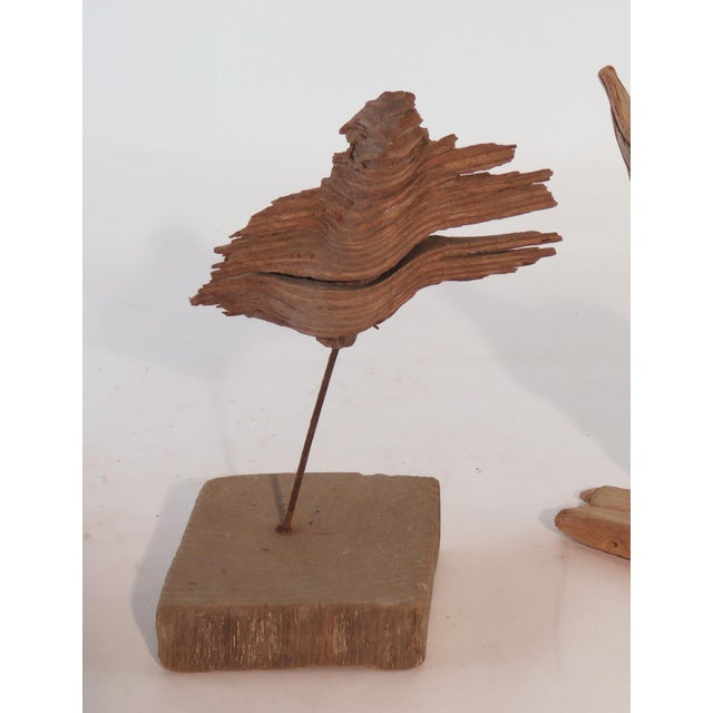 Collection of Abstract Driftwood Sculptures, Gloucester, Ma, Circa 1960s-1970s - Set of 9 For Sale - Image 10 of 13