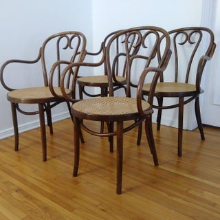 1960s Vintage Zpm Radomsko Chairs- Set of 4 Preview