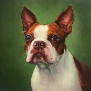 Modern Contemporary Boston Terrier Dog Portrait Oil Painting For Sale