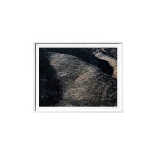 "Timothy Hogan ""Hillside"" Original Framed Color Landscape Photograph, 2017 For Sale"