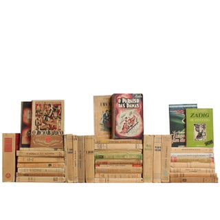 Portuguese & French Paperbacks - Set of 38