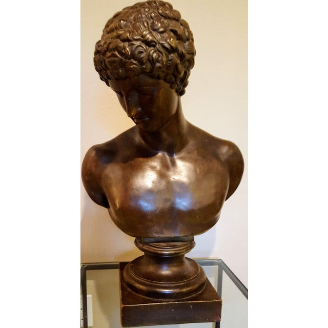 Classical bust of Antinous, the Greek youth known for his beauty and the lover of the Roman emperor Hadrian who deified...