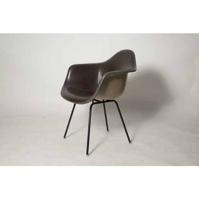Eames Padded Shell Chair for Herman Miller - Image 5 of 7