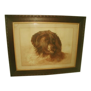English St. Bernard Dog Framed Watercolor, 19th Century For Sale