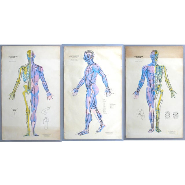 Vintage Acupuncture Serigraphs on Linen by Felix Mann - Set of 3 For Sale - Image 12 of 12