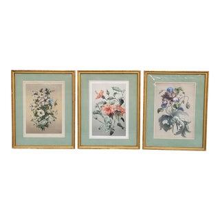 Vintage Framed French Botanical Prints-Set of 3