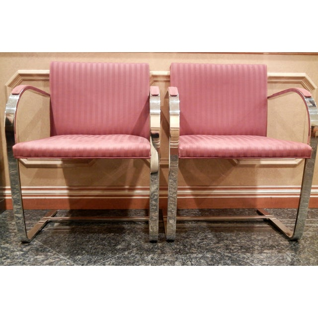 Pair of 1960s Mies Van Der Rohe Brno Chairs for Bruerton - a Pair - Image 3 of 11