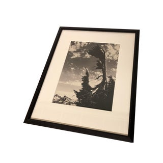 Northwest Mountains Framed Photograph by Tom McLauchlan For Sale