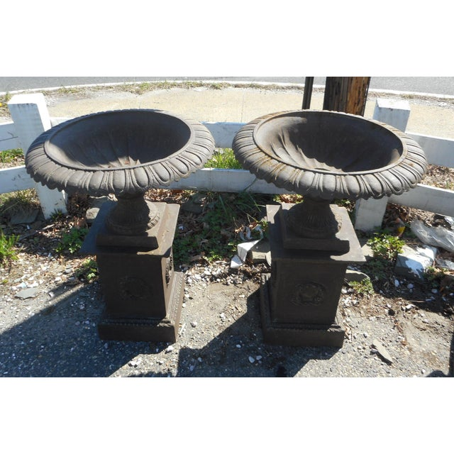 Country Impressive Pair of Cast Iron Urns For Sale - Image 3 of 11