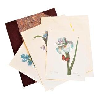 Marblized Print Portfolio and Pierre-Joseph Redouté Botanical Prints - 5 Pieces For Sale