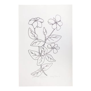 "Vintage 1978 Black and White Botanical ""Great St Johnswort"" Drawing by Signed Betsey Tryon For Sale"