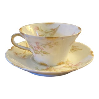 Haviland & Co. Teacup and Saucer For Sale