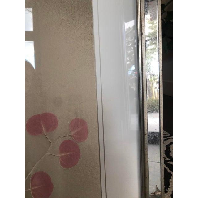 2010s Organic Nature Pressing on Velvet, Framed For Sale - Image 5 of 6