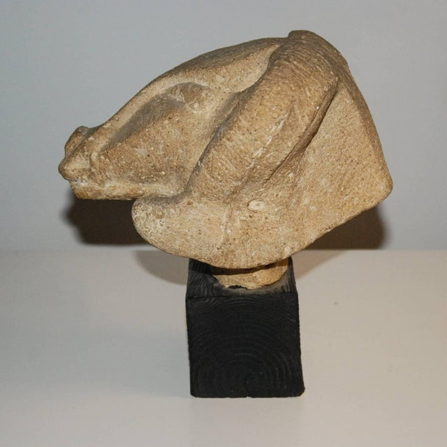 Tan Richmond Professional Institute Limestone Ram's Head Sculpture For Sale - Image 8 of 9