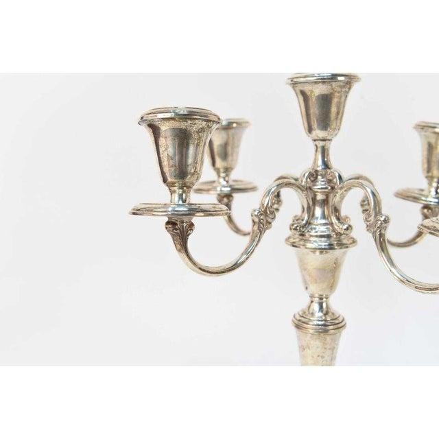 Gorham Silver Co. Gorham Sterling Silver 5 Light Candelabras - a Pair For Sale - Image 4 of 7