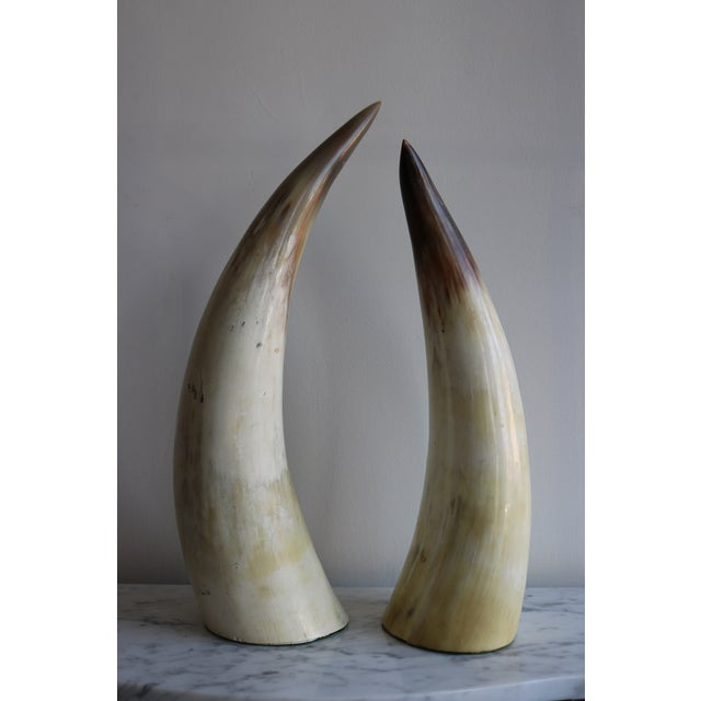 Decorative Bull Horns - A Pair - Image 2 of 4