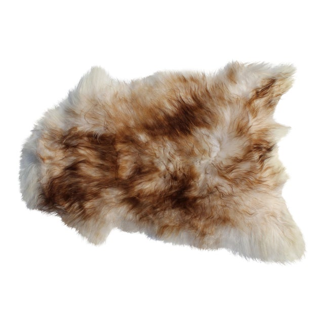 Modern Genuine Icelandic Sheepskin Shade of Brown Rug Throw- 2′ × 3′ For Sale
