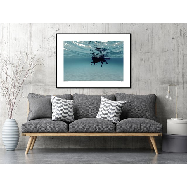 Contemporary Swimming Horse in the Mediterranean Photograph For Sale - Image 3 of 5