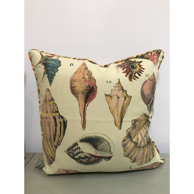 Nautical Specimen Sea Shell Print Decorative Throw Pillows - a Pair For Sale - Image 3 of 9