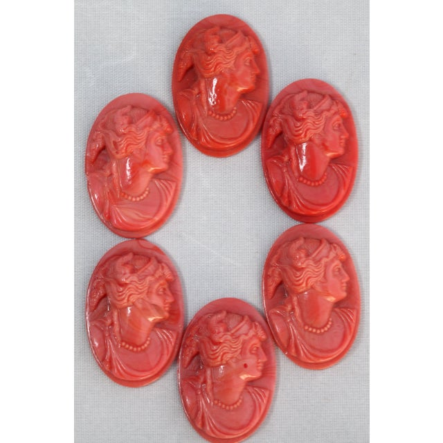 European Coral Glass Cameos - Set of Six - Image 9 of 9