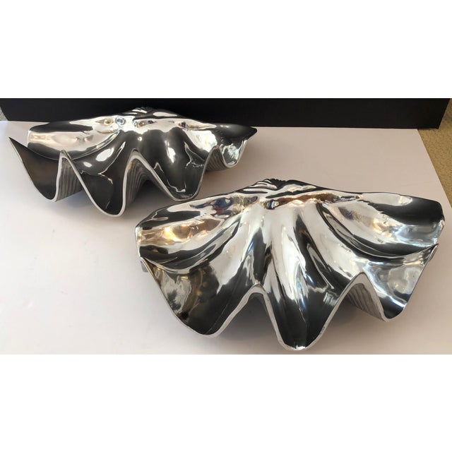Contemporary Fabulous Large Recently Polished Clam Shells Signed, A- Pair For Sale - Image 3 of 9