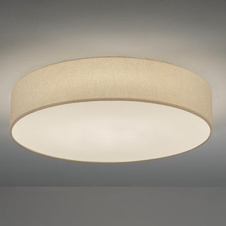 Snap Ceiling Light Preview