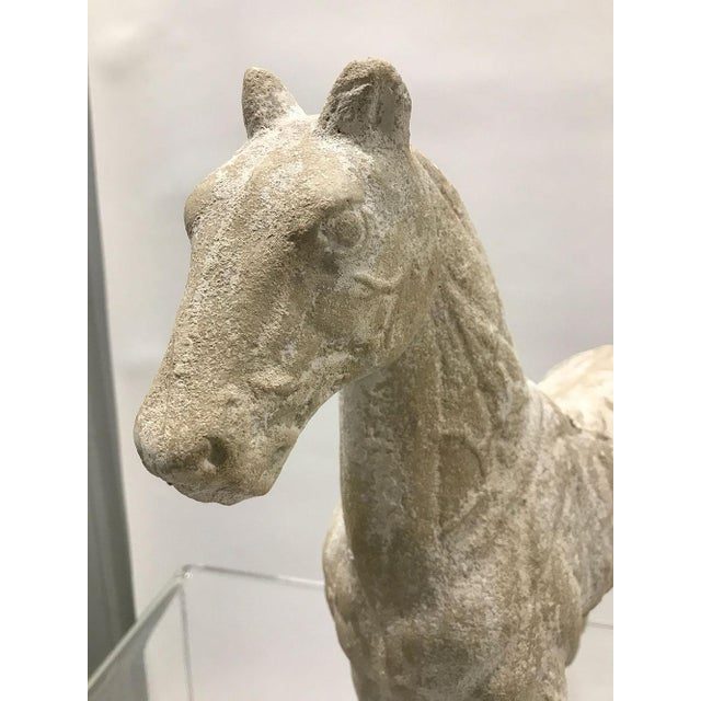 Plaster Mid-20th Century Vintage Plaster Model of Horse For Sale - Image 7 of 9