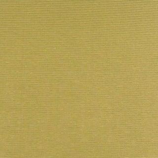 Suzanne Tucker Home Taylor Cotton/Silk Ottoman Fabric in Kiwi