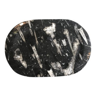 Orthoceras Stone Platter For Sale