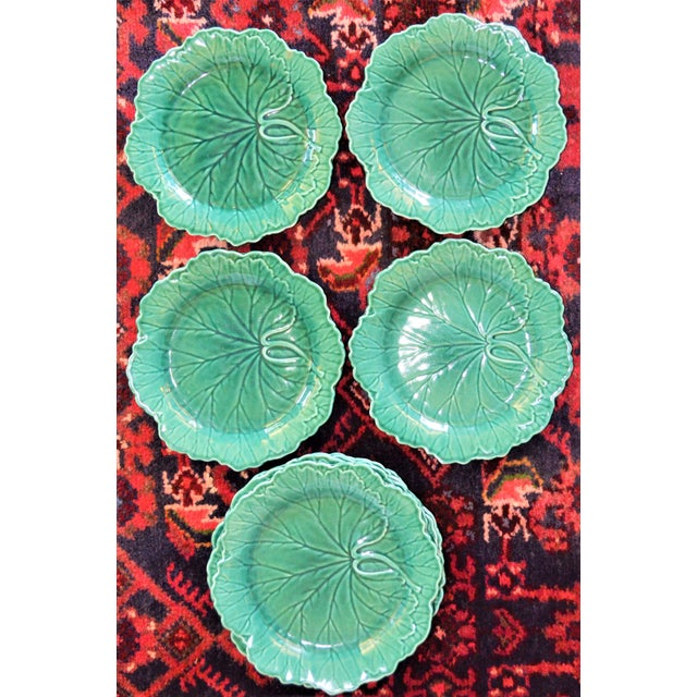 1950s English Traditional Wedgwood Majolica Plates - Set of 5 For Sale - Image 9 of 9