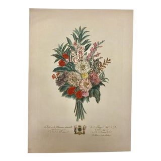 Vintage French Botanical Etching on Paper For Sale