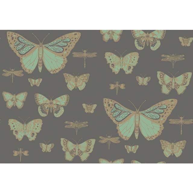 English Cole & Son Butterflies & Dragons Classic Style Wallpaper Sample For Sale - Image 3 of 4