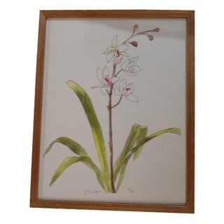 Framed Floral Print For Sale