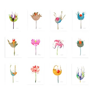 Botanical Grouping Giclee Prints - Set of 12 For Sale