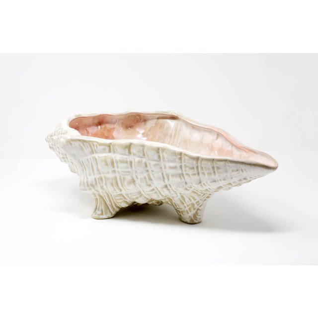 "Large 15"" Conch Shell Bowl by Pottery Barn For Sale - Image 13 of 13"