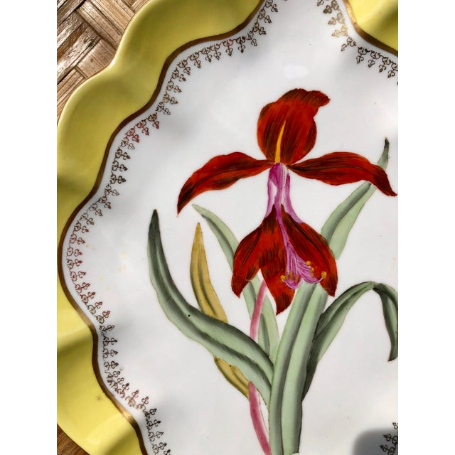 Late 20th Century Large Vintage Chelsea House Scalloped Porcelain Botanical Floral Plates- a Pair For Sale - Image 5 of 12