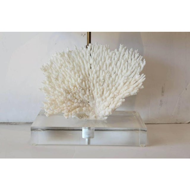 Coral Lamp - Image 4 of 10