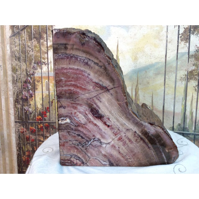 Large Petrified Wood Bookends - a Pair - Image 8 of 11