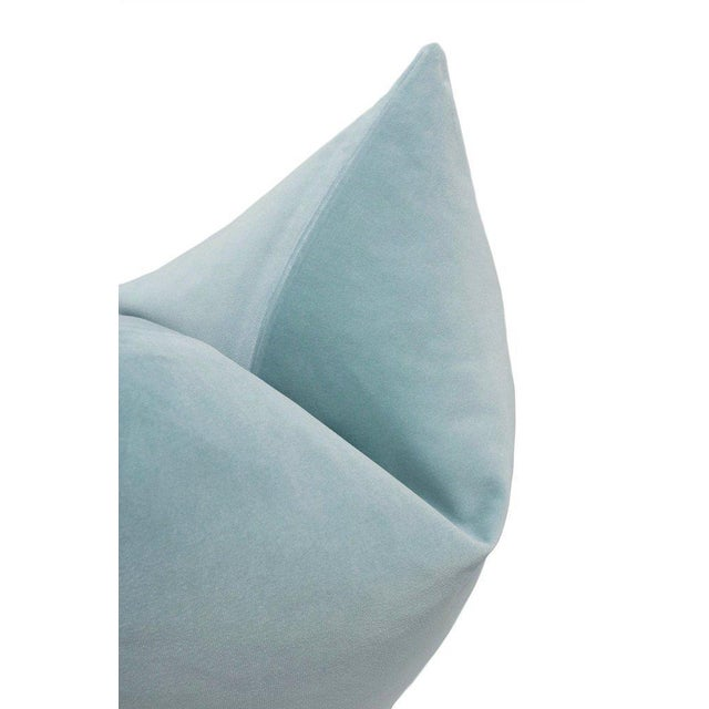 Natural Antelope Bolster and Spa Blue Velvet Pillows - Set of 4 For Sale - Image 4 of 9