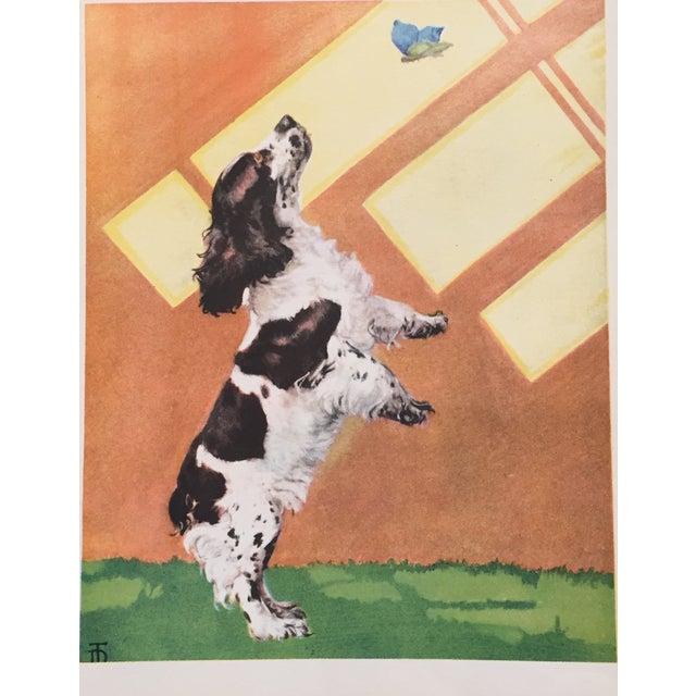 Vintage Cocker Spaniel Print by Diana Thorne - Image 1 of 2