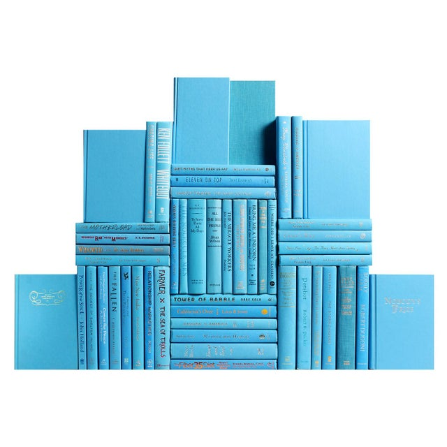 The Modern Sky Blue Book Wall combines fifty decorative books in a beautifully patterned blend of cerulean (light) blue to...
