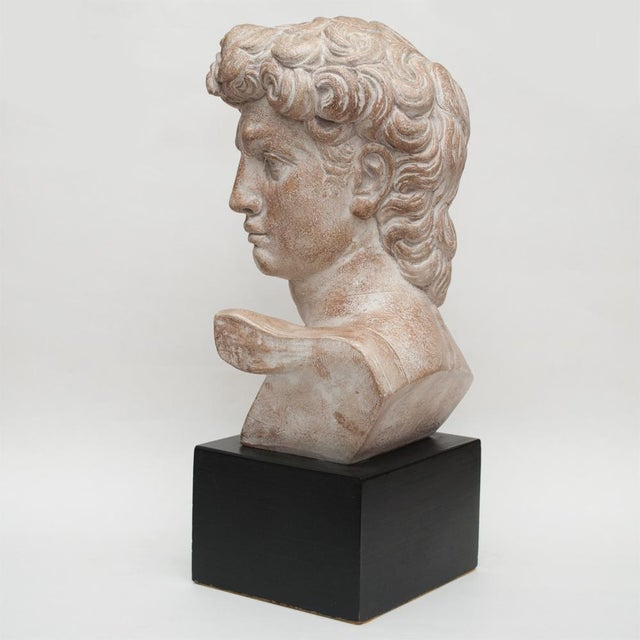 Mid Century Ceramic Bust of David For Sale - Image 4 of 13