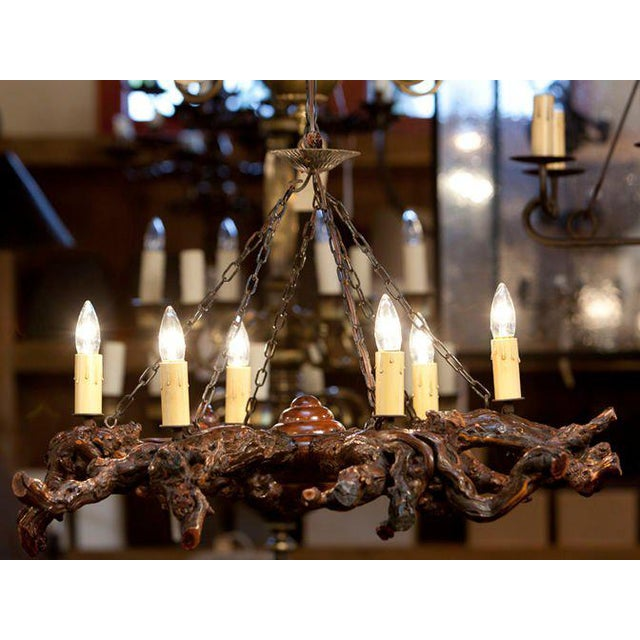 Rustic Gnarled Reclaimed Wood Chandelier with Six Lights from Belgium, circa 1950 For Sale - Image 4 of 10
