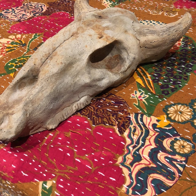 Unusual concrete cow skull hanging that is signed by the artist. Could be enjoyed indoor or outdoor.