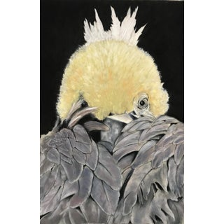 Marianne Stikas Baby Eagle Drawing For Sale