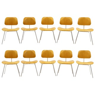 Charles Eames Plywood Dining Chairs, DCMs, Ten Available, Price Is for Each For Sale